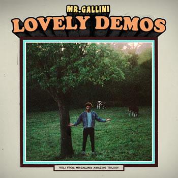 MR GALLINI - Lovey Demos, Vol.1