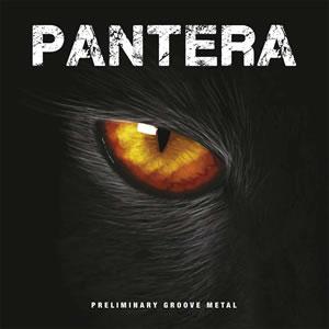 PANTERA - Preliminary groove metal
