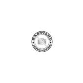 CBGB - Skull Wings