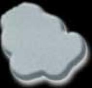 Silverlook