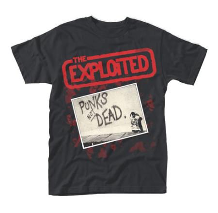 - Punks not Dead