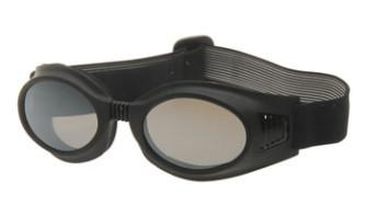 - Dudes & Dudettes - Sunglasses