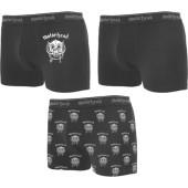 Warpig boxers