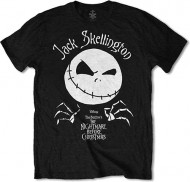 Nightmare Before Christmas - Jack Head