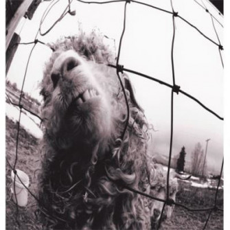 PEARL JAM - Vs.(Expanded Edition)
