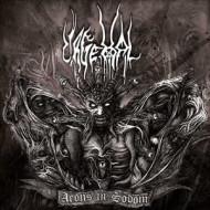 Aeons In Sodom