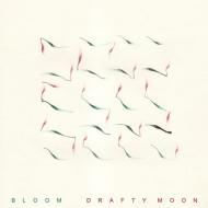 Drafty Moon