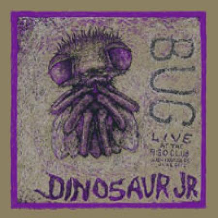 Bug (Live)