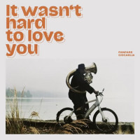 It Wasn't Hard To Love You