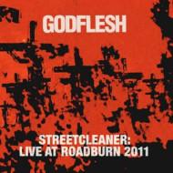 Live at Roadburn Festival